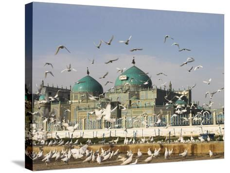 The Famous White Pigeons, Shrine of Hazrat Ali, Mazar-I-Sharif, Balkh Province, Afghanistan-Jane Sweeney-Stretched Canvas Print