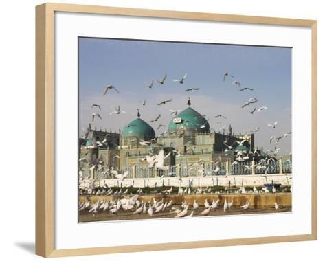 The Famous White Pigeons, Shrine of Hazrat Ali, Mazar-I-Sharif, Balkh Province, Afghanistan-Jane Sweeney-Framed Art Print
