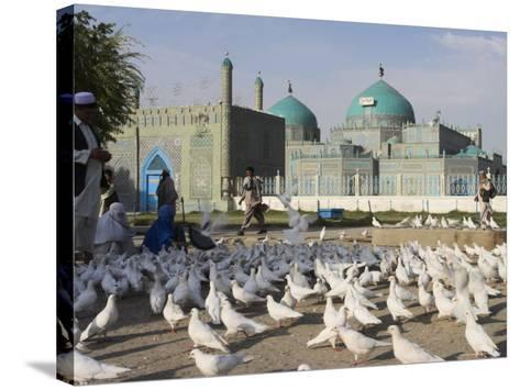 People Feeding the Famous White Pigeons, Mazar-I-Sharif, Afghanistan-Jane Sweeney-Stretched Canvas Print