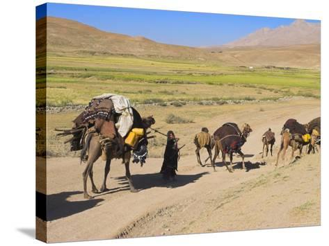 Kuchie Nomad Camel Train, Between Chakhcharan and Jam, Afghanistan-Jane Sweeney-Stretched Canvas Print