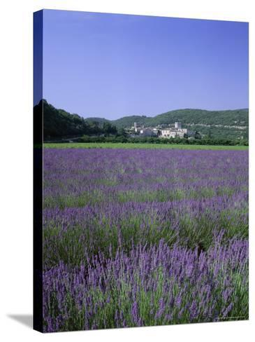 Lavender Fields and the Village of Montclus, Gard, Languedoc-Roussillon, France-Ruth Tomlinson-Stretched Canvas Print