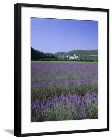 Lavender Fields and the Village of Montclus, Gard, Languedoc-Roussillon, France-Ruth Tomlinson-Framed Art Print