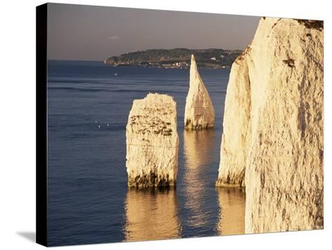 Early Morning Light on the Pinnacles, Handfast Point, Studland, Dorset, England-Ruth Tomlinson-Stretched Canvas Print