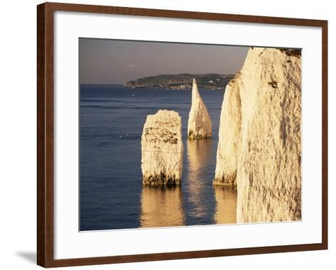 Early Morning Light on the Pinnacles, Handfast Point, Studland, Dorset, England-Ruth Tomlinson-Framed Art Print