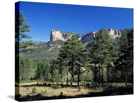 Pine Forest and Cliffs Above the Jucar Gorge, Cuenca, Castilla-La Mancha (New Castile), Spain-Ruth Tomlinson-Stretched Canvas Print