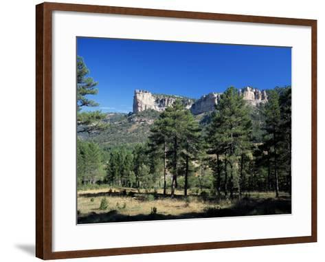 Pine Forest and Cliffs Above the Jucar Gorge, Cuenca, Castilla-La Mancha (New Castile), Spain-Ruth Tomlinson-Framed Art Print