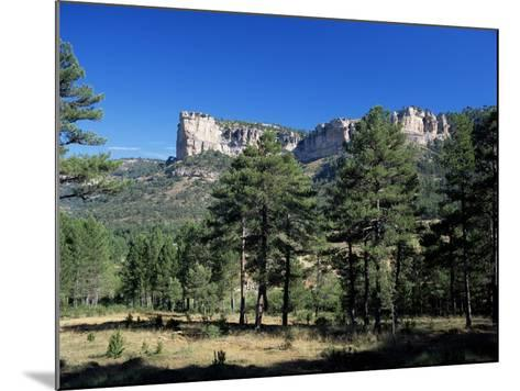 Pine Forest and Cliffs Above the Jucar Gorge, Cuenca, Castilla-La Mancha (New Castile), Spain-Ruth Tomlinson-Mounted Photographic Print