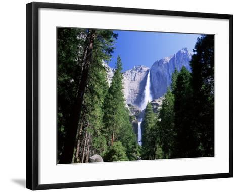Upper and Lower Yosemite Falls, Swollen by Summer Snowmelt, Yosemite National Park, California-Ruth Tomlinson-Framed Art Print