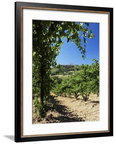 View from Vineyard of the Town of San Gimignano, Tuscany, Italy-Ruth Tomlinson-Framed Art Print