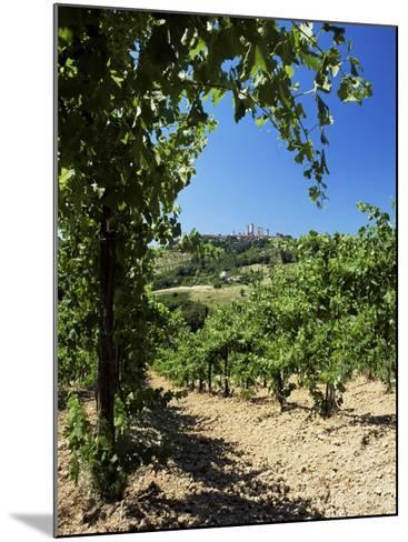 View from Vineyard of the Town of San Gimignano, Tuscany, Italy-Ruth Tomlinson-Mounted Photographic Print