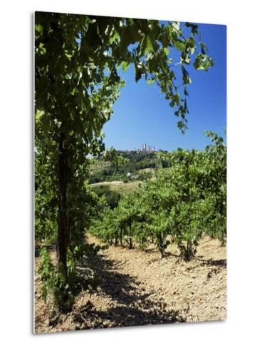 View from Vineyard of the Town of San Gimignano, Tuscany, Italy-Ruth Tomlinson-Metal Print