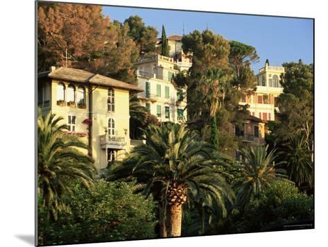 Hillside Mansions Amongst Palms, Santa Margherita Ligure, Portofino Peninsula, Liguria, Italy-Ruth Tomlinson-Mounted Photographic Print