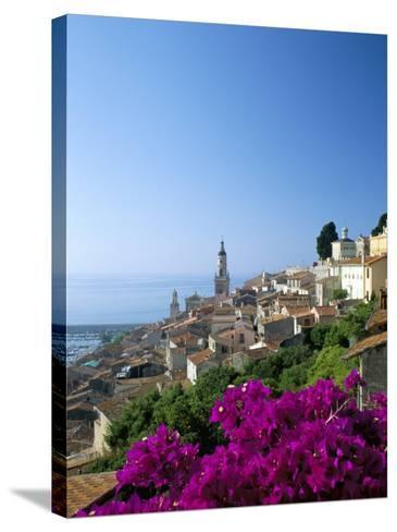 Bougainvillea in Flower, Menton, Alpes-Maritimtes, Cote d'Azur, Provence, French Riviera, France-Ruth Tomlinson-Stretched Canvas Print