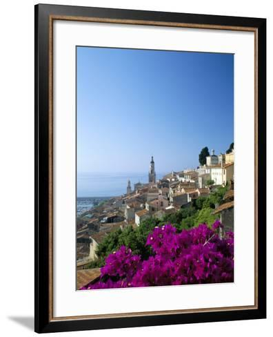 Bougainvillea in Flower, Menton, Alpes-Maritimtes, Cote d'Azur, Provence, French Riviera, France-Ruth Tomlinson-Framed Art Print