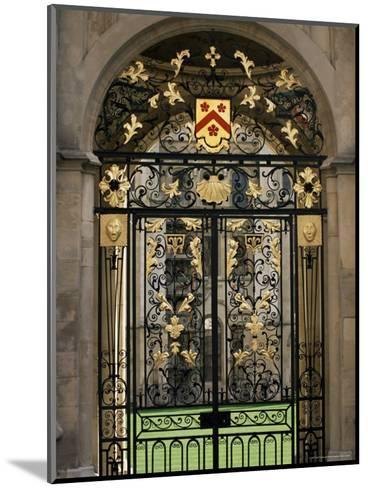 Ornate Gilt Gate of All Souls' College, Oxford, Oxfordshire, England, United Kingdom-Ruth Tomlinson-Mounted Photographic Print