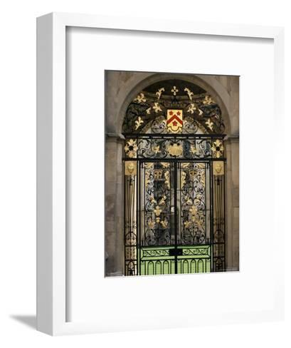 Ornate Gilt Gate of All Souls' College, Oxford, Oxfordshire, England, United Kingdom-Ruth Tomlinson-Framed Art Print