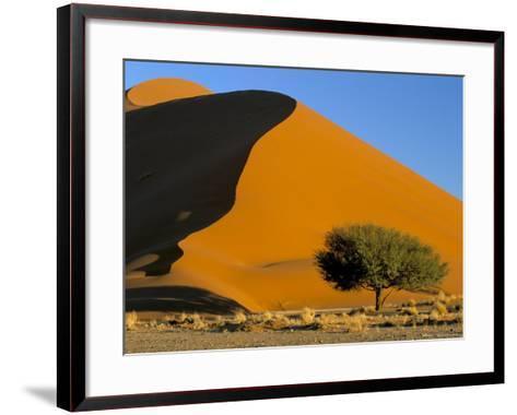 Sand Dune, Sossusvlei Dune Field, Namib-Naukluft Park, Namib Desert, Namibia, Africa-Steve & Ann Toon-Framed Art Print