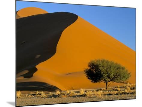 Sand Dune, Sossusvlei Dune Field, Namib-Naukluft Park, Namib Desert, Namibia, Africa-Steve & Ann Toon-Mounted Photographic Print