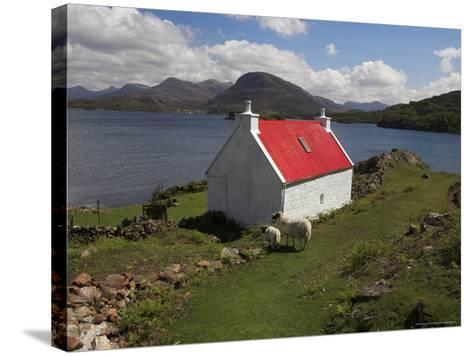 View Over Loch Torridon, Highlands, Scotland, United Kingdom-Steve & Ann Toon-Stretched Canvas Print
