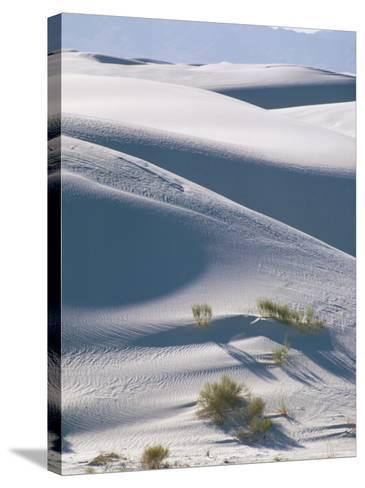 White Sands Desert, New Mexico, USA-Adam Woolfitt-Stretched Canvas Print