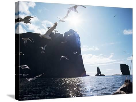 Faroe Islands, Denmark, North Atlantic-Adam Woolfitt-Stretched Canvas Print