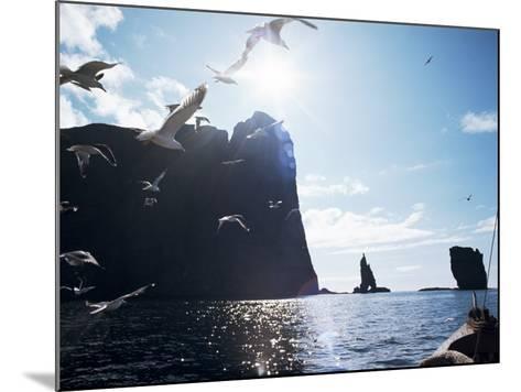 Faroe Islands, Denmark, North Atlantic-Adam Woolfitt-Mounted Photographic Print