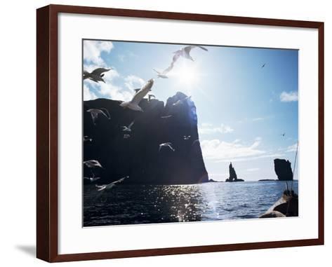 Faroe Islands, Denmark, North Atlantic-Adam Woolfitt-Framed Art Print