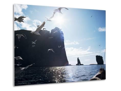 Faroe Islands, Denmark, North Atlantic-Adam Woolfitt-Metal Print