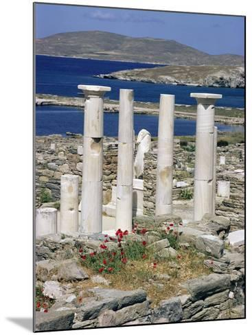 Archaeological Site, Delos, Unesco World Heritage Site, Greece-Adam Woolfitt-Mounted Photographic Print