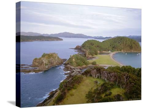 Bay of Islands, Northland, North Island, New Zealand-Nick Wood-Stretched Canvas Print