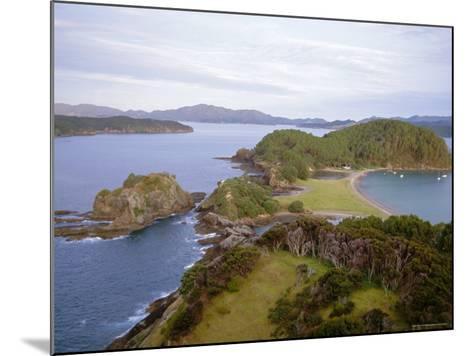 Bay of Islands, Northland, North Island, New Zealand-Nick Wood-Mounted Photographic Print