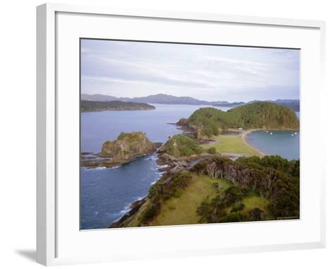 Bay of Islands, Northland, North Island, New Zealand-Nick Wood-Framed Art Print