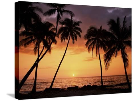 Sunset, Kohala Coast, Island of Hawaii, Hawaiian Islands, USA--Stretched Canvas Print