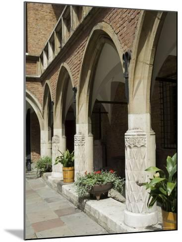The Collegium Maius Museum of the Jagiellonian University-R H Productions-Mounted Photographic Print