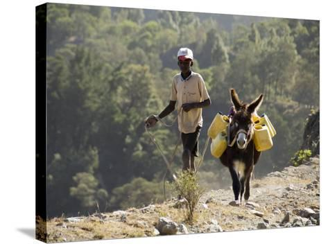 Donkey Carrying Water, Santo Antao, Cape Verde Islands, Africa-R H Productions-Stretched Canvas Print