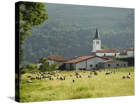 Countryside Near St. Jean Pied De Port, Basque Country, Pyrenees-Atlantiques, Aquitaine, France-R H Productions-Stretched Canvas Print