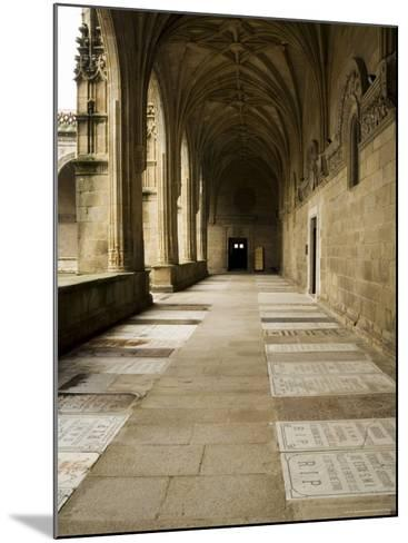 Graves in the Cloisters of Santiago Cathedral, Santiago De Compostela, Galicia, Spain-R H Productions-Mounted Photographic Print