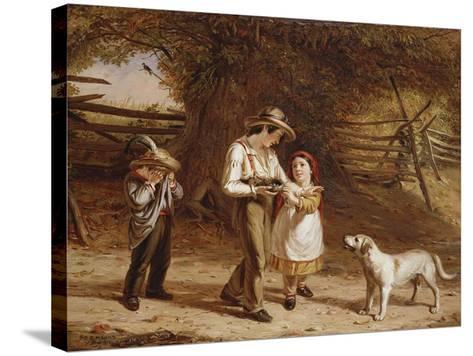 Bird-Egging, 1844-David Gilmour Blythe-Stretched Canvas Print