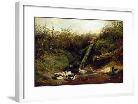 Ducks at a Brook, 1872-Arthur Fitzwilliam Tait-Framed Art Print