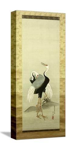Cranes-Suzuki Kiitsu-Stretched Canvas Print