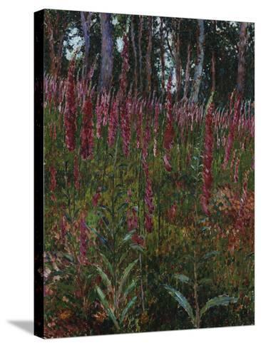 Garden with Foxgloves-Eug?ne Boudin-Stretched Canvas Print