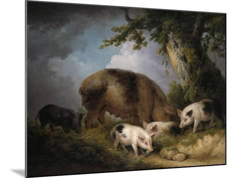 A Sow and Her Four Piglets in a Wooded Landscape-Henry Thomas Alken-Mounted Giclee Print