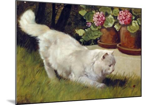 A White Persian Cat with a Ladybird-Cecil Aldin-Mounted Giclee Print