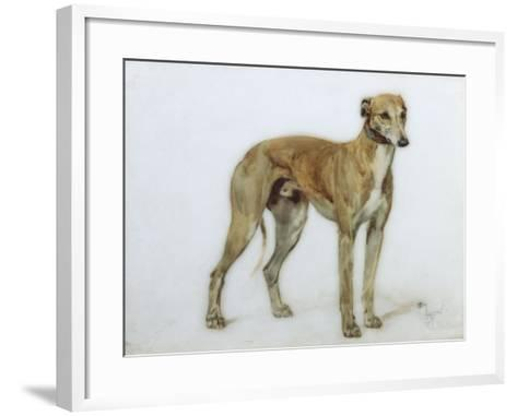 A Fawn Greyhound, 1897-Cecil Aldin-Framed Art Print