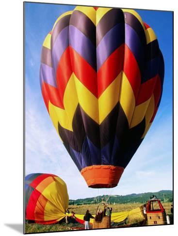 Balloon Landing, Napa Valley, California-John Elk III-Mounted Photographic Print