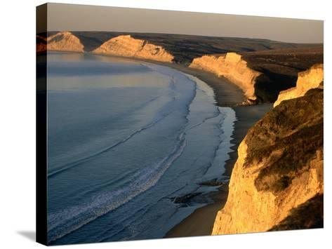 Drakes Beach and the Cliffs at Sunrise, Point Reyes National Seashore, California-John Elk III-Stretched Canvas Print