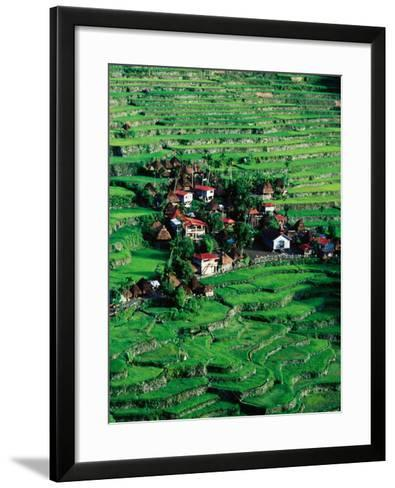 Ricescapes, Philippines-Richard I'Anson-Framed Art Print