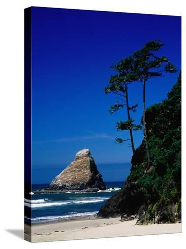 Rocky Outcrop at Heceta Head State Beach, Near Florence, Florence, Oregon-Richard Cummins-Stretched Canvas Print