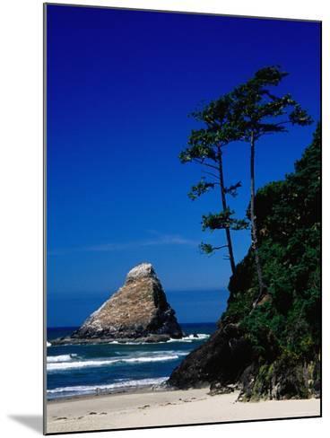 Rocky Outcrop at Heceta Head State Beach, Near Florence, Florence, Oregon-Richard Cummins-Mounted Photographic Print