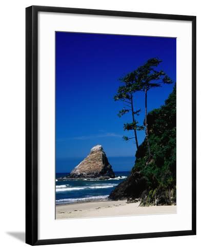 Rocky Outcrop at Heceta Head State Beach, Near Florence, Florence, Oregon-Richard Cummins-Framed Art Print